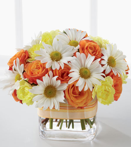 Sweet Splendor Arrangement