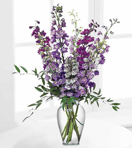 Delphinium Dreams Arrangement